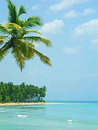 Dominican properties: Samana beach in the Spain / Espagne, immobilier: la plage de Samana / Spanien Immobilien: der Samana Strand / Propiedad inmobiliaria en la España: la playa de Samana